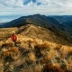 Hiking-The-Paparoa-Track