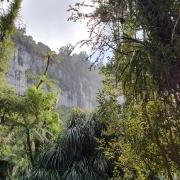 Paparoa-Great-Walk