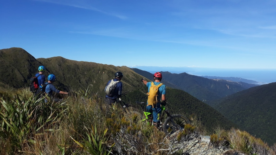 Paparoa Track in One Day
